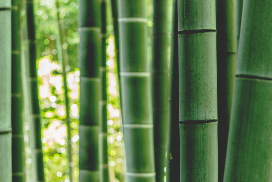How we make our bamboo clothes